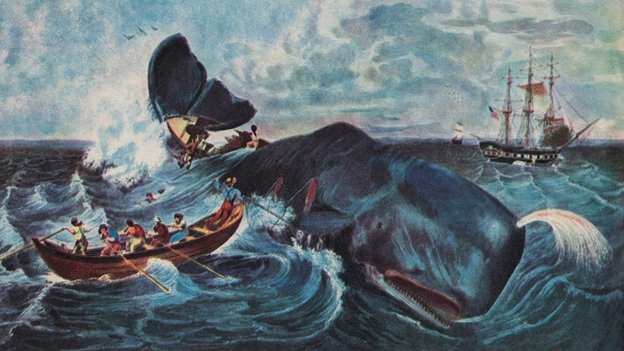 Roze a Wail': Whales, Whaling and Dreaming